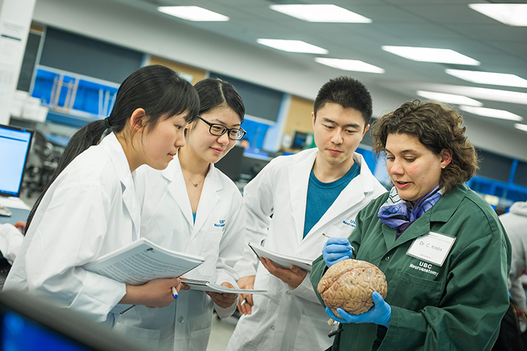 Dr. Claudia Krebs takes the hands on approach in teaching students about the human brain. Photo credit: Martin Dee